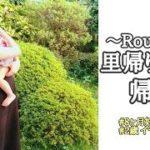 【ルーティン】里帰り出産 帰省 イヤイヤ期2歳0か月娘と8か月妊婦の日常