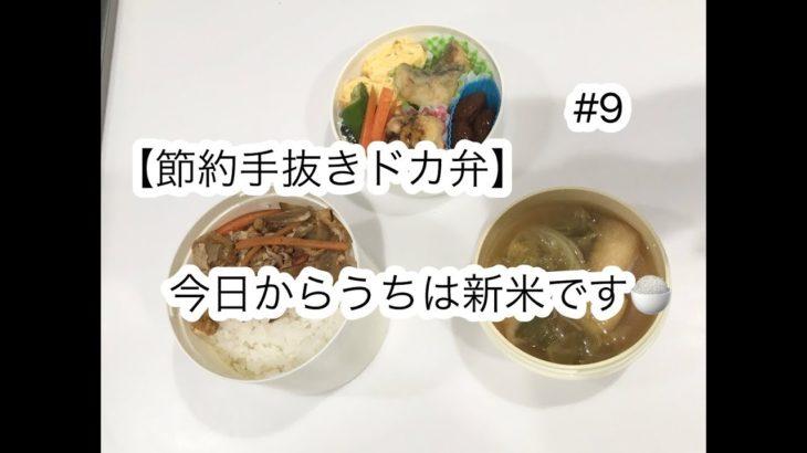 【節約手抜きドカ弁】#9 今日から新米!きんぴら弁当