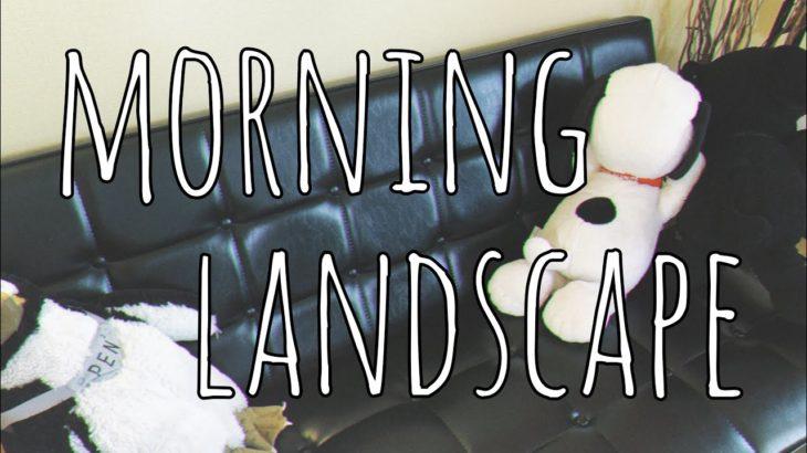 アラフォー子育てママのとある朝の様子✳︎Morning Landscape