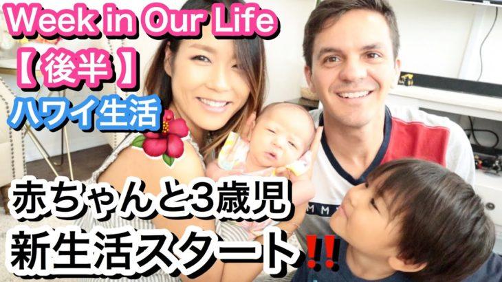 【海外生活】赤ちゃんと3歳児と過ごす日常生活!!!! 後半【Week in Out Life #2】アメリカ ハワイ 主婦 |海外子育てママ|新米ママ 出産 新生児