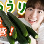 【きゅうりを大量消費】超簡単おいしいレシピで4品たくさん作る!【料理音フェチASMR】