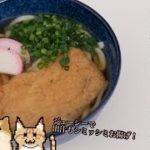 【料理】Reki mesi 出汁パックで簡単!手作りジューシーきつねうどん【レシピ】