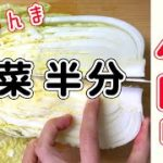 【白菜レシピ】お鍋で切るより簡単で調味料もほぼいらん!?1/2玉を大量消費!【料理】