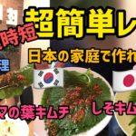 韓国料理レシピ)超簡単!エゴマの葉キムチ|しそキムチ 作り方