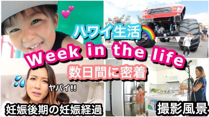 【ワンオペ育児】妊婦ママと息子:日常生活Vlog!!!【Week in the life】ハワイ 主婦ルーティン|海外子育てママ|新米ママ 妊娠