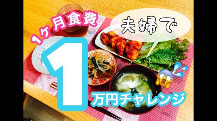 #1【節約】初心者の1ヶ月食費1万円チャレンジ//アラサー新米主婦