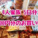 【節約!食費1000円/4人】お買い物の中身を大公開!!5000円でどれだけ買えるのか!?