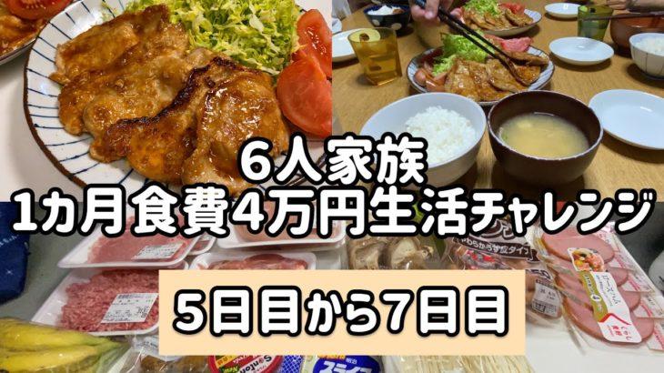 【6人家族食費4万円生活】#節約 #家計管理 #主婦