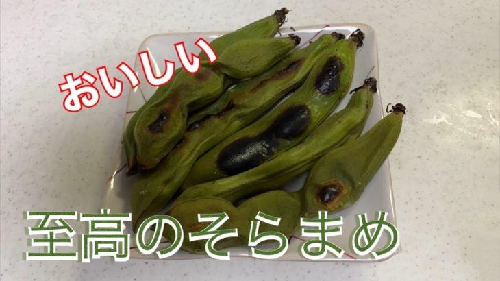 【料理】簡単!おいしい焼きそらまめの作り方レシピ