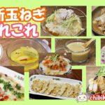 【新玉ねぎ】簡単でおいしい! レシピ9品紹介#129