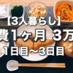 【節約料理】1ヶ月の食費3万円!今日の夕飯は?【その1】