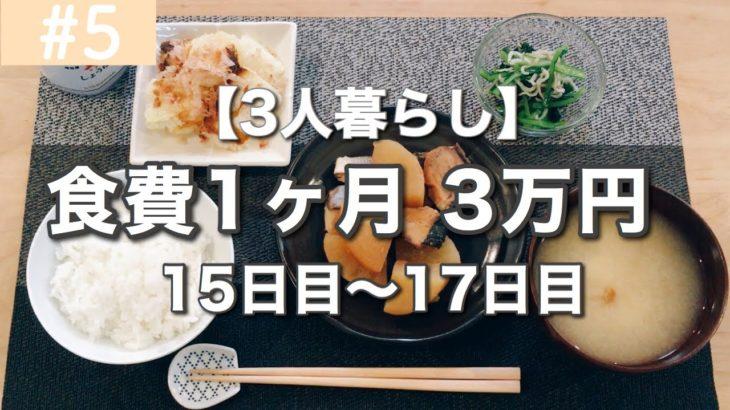 【節約料理】1ヶ月の食費3万円!今日の夕飯は?【その5】育児について思うことあれこれ