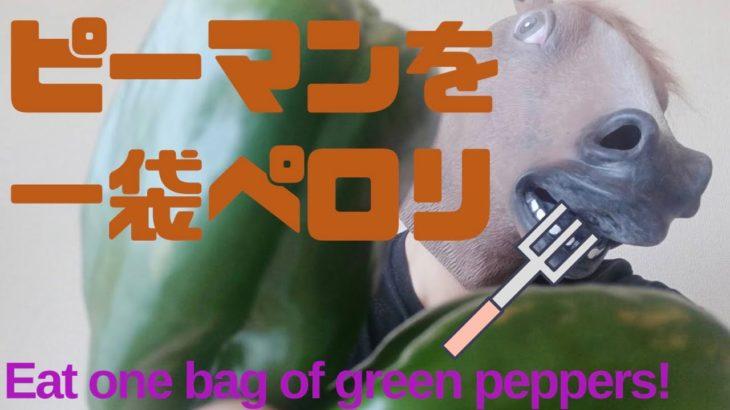 【簡単レシピ料理】ピーマン嫌いな子が一袋ペロリ(Easy Japanese home cooking)