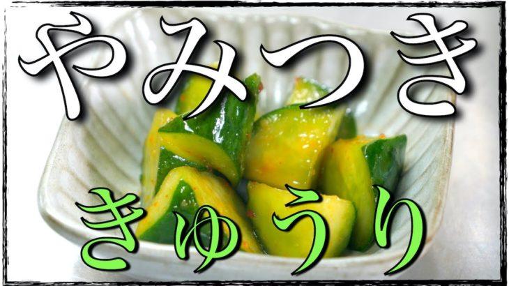 【簡単料理】やみつき小鉢!「きゅうりのピリ辛漬け」の作り方【低糖質レシピ】Low Carb Cucumber Recipe