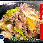 【糖質制限レシピ】材料2つで超簡単!「豚肉と白ネギの旨塩レモン炒め」の作り方【低糖質】Low Carb Pork Recipe