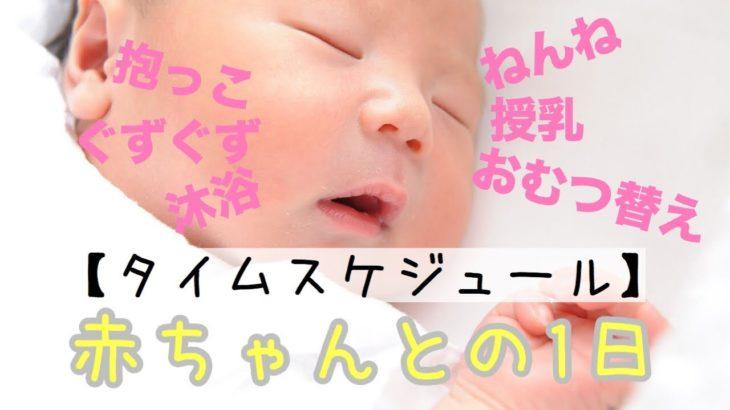 【新生児】どんなかんじ?赤ちゃんとママの1日まとめ【ルーティン】
