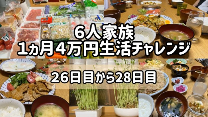 ⑨【節約6人家族 食費4万円生活】#主婦#節約