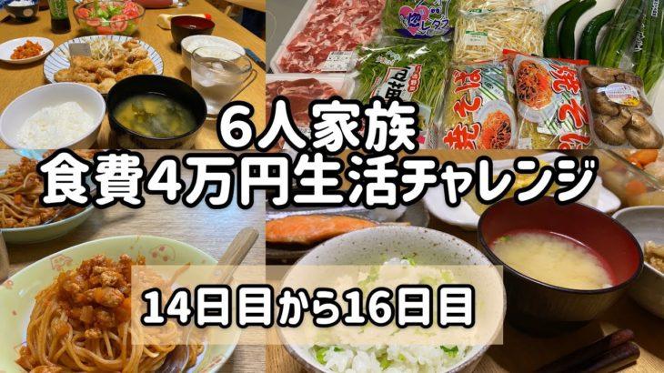 ⑤ 【節約6人家族食費4万円生活】#家計管理#主婦