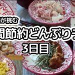 【目指せ1食100円以下!】ズボラ主婦が1週間節約丼ランチに挑む@節約レシピ3日目