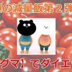 究極の減量飯第2弾【マグマ】レシピを主婦が節約・時短にアレンジ!!
