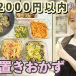 【作り置き】2000円以内の食材で簡単節約レシピ7品!【主婦】