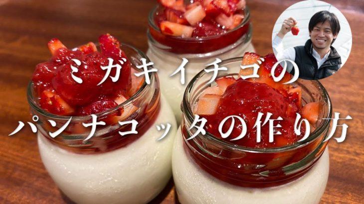 【いちごのスイーツレシピ】簡単!ミガキイチゴのパンナコッタ