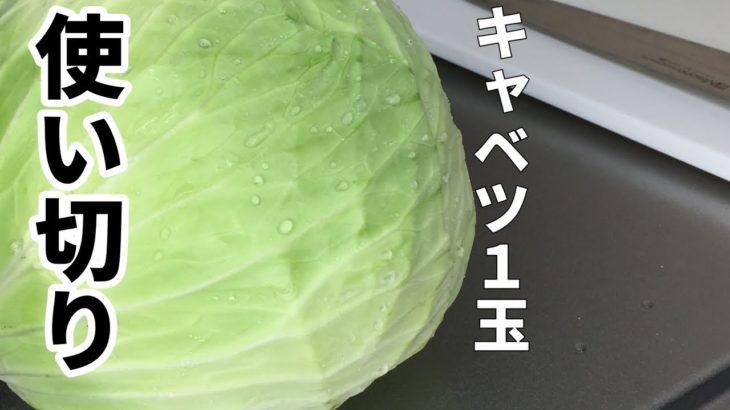 キャベツ使い切りレシピ!簡単サラダと【気になる新常識】