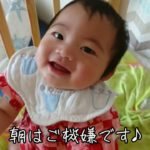 生後9ヶ月赤ちゃんの1日ルーティン!初ママの子育て日記