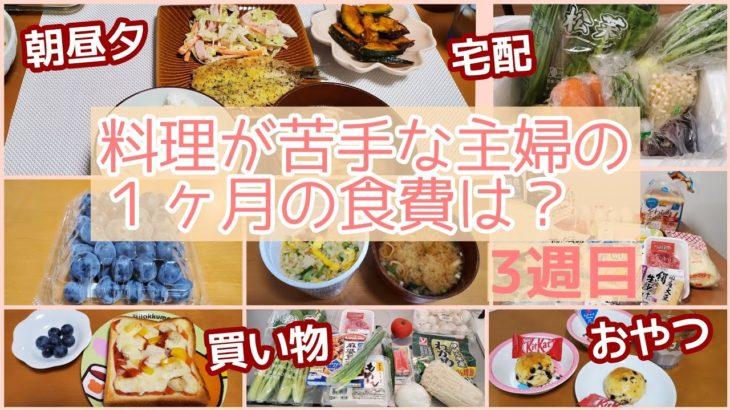 【1週間の食費】料理が苦手な主婦のリアルな食生活③初めてのイワシフライ🍤✨