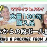 【100均】大量ダイソー&セリア購入品【Huge DAISO & Seria Haul  】子育てママ ハワイ 生活 国際結婚 ルーティン 主婦