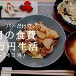 【料理苦手でも節約できる】1ヶ月食費3.5万円生活その4