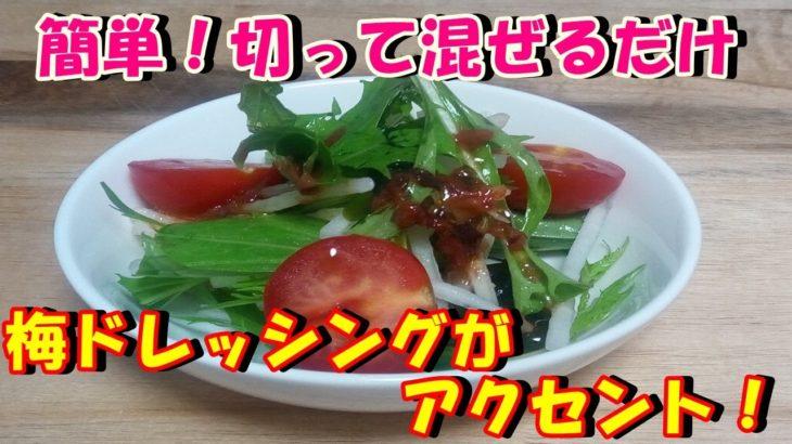 【ダイエットレシピ】簡単!切って混ぜるだけ!ワカメと大根のサラダを作ってみた♪