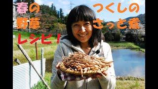 春の野草レシピ!ツクシのさっと煮【簡単料理レシピ】#007