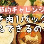 【節約チャレンジ】ひき肉1パックで何品作れる?もやし、豆腐でかさまししまくる!