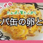 【10分レシピ】カンタンすぎる☆サバ缶の卵とじ【たんぱく質たっぷり】