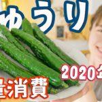 【きゅうりを大量消費2】5分で作れる超簡単3品!夏にぴったりレシピでもう困らない!