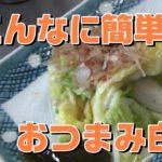 【料理動画】簡単 白菜の浅漬け レシピ