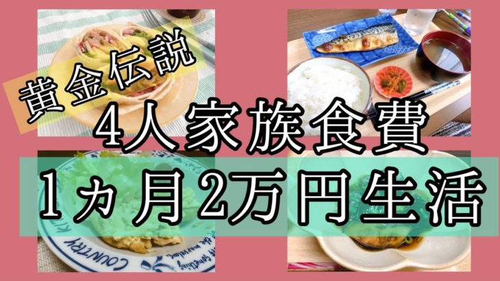 【食費節約生活】4人家族1ヶ月2万円生活7〜9日目🌷数年ぶりのナス料理