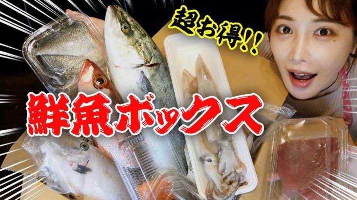【簡単時短レシピ】30分で8品の魚料理に挑戦!誰でも簡単に作れるレシピ紹介します!!