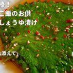 副菜を簡単3分!別名ごはん泥棒!青じそのおいしいご飯のお供/Soy Sauce Marinated Shiso Leaves