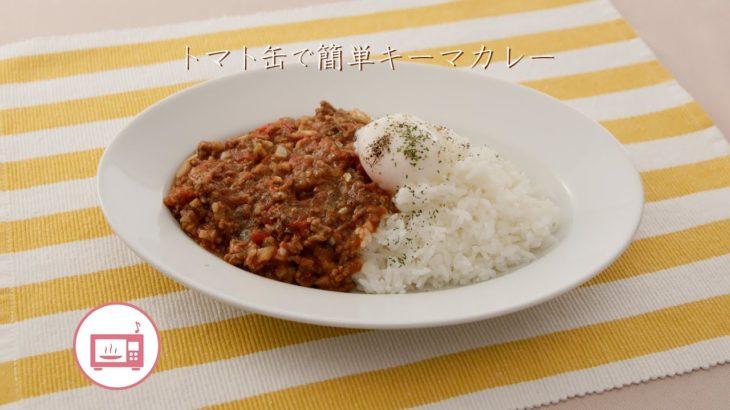 トマト缶で簡単キーマカレー【きちんとキッチンbydaiei】