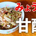 超簡単!やみつきみょうがの甘酢あえ♪初心者さん向け料理レシピ動画*ローカロリー食材でダイエット!【cooking】簡単便利な作り置き<JAPAN>