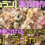 【鳥羽周作ミシュランシェフレシピ】簡単に作れる「万能お米で作るパラパラチャーハン」を作ってみた【スッキリ】