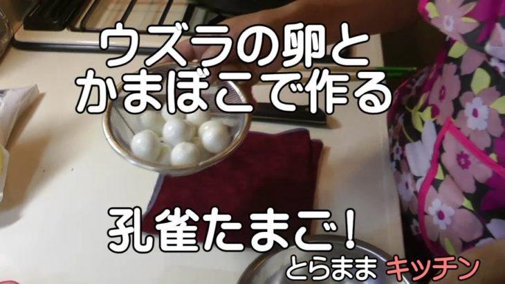 孔雀たまご/簡単料理レシピ/とらままきっちん