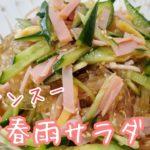 お惣菜の定番!中華春雨サラダ/バンサンスー/簡単な作り方