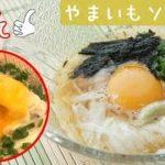 [レシピ動画]ツルツル♪とろ~【山芋ソーメン】もう一品欲しい時、パパっと!!飲み干せるほどおいし♪ 料理 レシピ 簡単