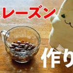 ラムレーズンの作り方♪初心者さん向け料理レシピ動画【cooking】簡単便利な作り置き