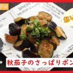【料理レシピ動画】旬の茄子を使った『茄子のさっぱりポン酢炒め』の作り方【簡単料理】
