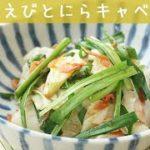 [レシピ動画] えびの風味が凄い!【桜えびとにら・キャベツの炒め物】優秀副菜♪もう一品欲しい時に!料理 レシピ 簡単