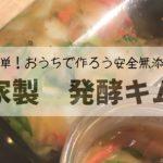 【自家製キムチ、カクテキ】発酵おかずアイデア/簡単レシピ/簡単発酵料理/手作りキムチ